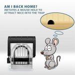 Everteco Piège à souris humain, piège à rongeurs, attrape-souris, ne tue pas, cage pour attraper une souris vivante, pièges pour attraper et libérer, piège réutilisable à rat, à écureuil (Ensemble de 2) de la marque Everteco image 2 produit