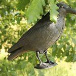 faire peur aux oiseaux TOP 0 image 2 produit