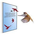 faire peur aux oiseaux TOP 1 image 2 produit