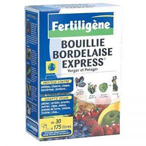 Fertiligene - Bouillie bordelaise express / Boîte 700 g de la marque Fertiligene image 0 produit