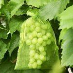 filet anti insectes jardinage TOP 13 image 2 produit