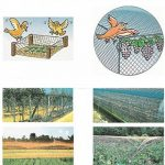 Filet anti-oiseaux pour jardin arbre fruitier 4 dimensions Filet de bassin protection de plant légumes Suyi de la marque Hi Suyi image 3 produit