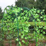 Filet de jardin, support pour plantes grimpantes Net 10*10cm en maille filet pour plante, animal, végétal protection 3.6x1.8m 3.6x1.8m de la marque GoodFaith image 3 produit