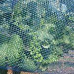 filet pour cerisier TOP 3 image 1 produit
