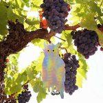 filet pour protéger arbre fruitier TOP 8 image 1 produit