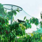 filet vert jardin TOP 12 image 1 produit