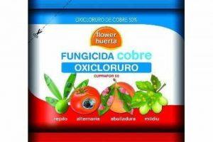 Flower e.40 Fongicide cuivre oxychlorure 50gr de la marque Flower image 0 produit