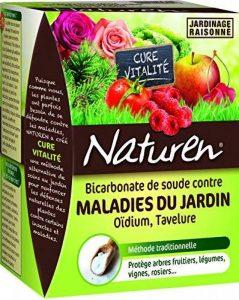 fongicide jardin TOP 12 image 0 produit