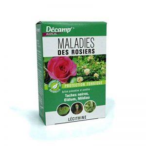 fongicide pour rosiers TOP 7 image 0 produit