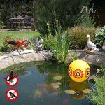 Gardigo 2 Ballons Épouvantails Effaroucheurs Anti-Pigeons, Oiseaux, Hérons, Pies, Vanneaux et Moineaux de la marque Gardigo image 4 produit