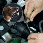 Gardigo 78405 - Set de 2 Répulsifs Ultrason pour voiture, compartiment moteur | Branchement sur la batterie d'automobile 12 V | Repeller repousse anti-martres, fouines, ratons laveurs et rongeurs de la marque Gardigo image 3 produit