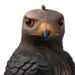 Gazechimp Réaliste Hibou Leurre de Chasse Décoration Protège Jardin Contre Ravageurs Oiseau Pigeon de la marque Gazechimp image 3 produit