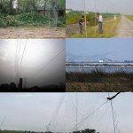 Gosear Filet Anti-oiseaux, 16 x 3m Anti Bird Pond Green Mesh Filet de Jardin et D'escrime pour la Protection des Plantes Empêcher Sparrow 1,5 x 1.5 cm Trous de la marque Gosear image 3 produit