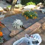 Géotextile polypropylène blanc de 25 m². Contrôle du développement des mauvaises herbes. Présentation en rouleau. de la marque Espacio Vegetal image 2 produit