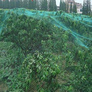 GOTOTOP 1pc/2pc/4pcs Filet de Protection Jardin Anti-oiseaux pour Jardin, Arbres Fruitiers, Légumes et Plantes, Bassin d'Eau - 4m x 10m (1pc) de la marque GOTOTOP image 0 produit