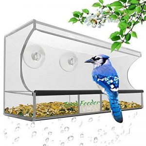 Grande mangeoire à oiseaux - Transparent, plateau amovible, trous de drainage et beau contenant, 3 ventouses robustes de la marque AnTom image 0 produit