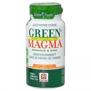 Green magma - Green magma en comprimé - 136 comprimés de la marque Green Magma image 0 produit