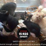 Hamac 20kg de chat Animal domestique Contactes fenêtre monté Hamac Perchoir Coussin de siège Lit étagère à suspendre Idéal pour plusieurs Chats amovible à la maison–55*35cm (Cadeau jouet Poisson) de la marque Homesupplier image 4 produit