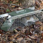 Havahart 1025 Piège cage pour animaux vivants à double entrées Petite taille de la marque Havahart image 2 produit