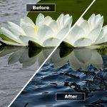 herbicide naturel mauvaises herbes TOP 14 image 2 produit