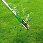 herbicide pissenlit TOP 13 image 2 produit