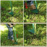 herbicide pissenlit TOP 3 image 2 produit