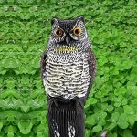 hibou anti oiseaux TOP 0 image 3 produit