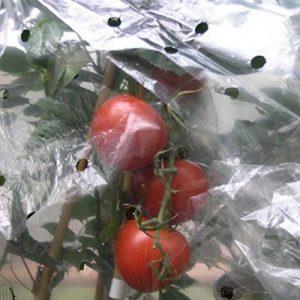 housse de protection pour tomates TOP 2 image 0 produit