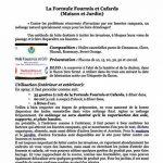 HuilesUtiles - La Formule Fourmis Et Cafards - 10 ml de la marque Huiles Utiles image 2 produit