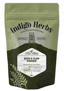 Indigo Herbs Harpagophytum Poudre 100g de la marque Indigo-Herbs image 0 produit