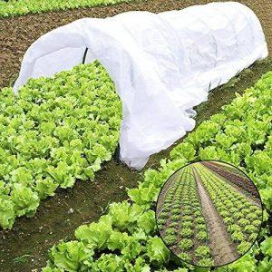JYCRA Plante Mini serre, tunnel, 25,5gram Plante Row Coque et 6pcs en acier avec revêtement plastique Cerceaux pour serre Jardin plantes protection et Croissance de la marque JYCRA image 0 produit