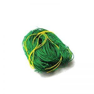 Jycra support pour plantes Net en treillis, EN NYLON POUR Plante grimpante Filet support pour support pour plantes Légumes, protection et plantes grimpantes, Nylon, Green, 3ft x 6ft de la marque JYCRA image 0 produit