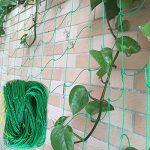 Jycra support pour plantes Net en treillis, EN NYLON POUR Plante grimpante Filet support pour support pour plantes Légumes, protection et plantes grimpantes, Nylon, Green, 3ft x 6ft de la marque JYCRA image 2 produit