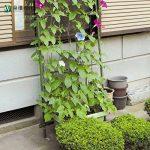Jycra support pour plantes Net en treillis, EN NYLON POUR Plante grimpante Filet support pour support pour plantes Légumes, protection et plantes grimpantes, Nylon, Green, 3ft x 6ft de la marque JYCRA image 3 produit