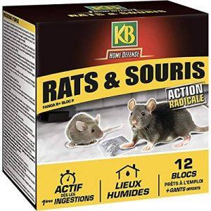 KB Blocs Appat Anti Rats et Souris 240 gr de la marque KB image 0 produit