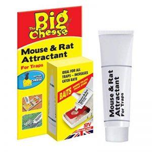 La souris au fromage et son attractif pour rats (appât naturel sans poison, attire les rongeurs, réapparaît jusqu'à 60 pièges), tube de 26 g de la marque The Big Cheese image 0 produit