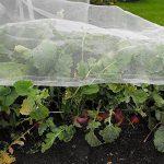 LEISURE TIME Filet de protection contre les insectes, maille de légumes élèvent le filet de maille fin de jardin de maille fine de filet de protection d'insecte (6M x 2.4M) de la marque LEISURE TIME image 2 produit