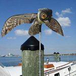 leurre pour effrayer oiseaux TOP 0 image 4 produit