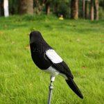 leurre pour effrayer oiseaux TOP 12 image 2 produit