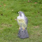 leurre pour effrayer oiseaux TOP 2 image 4 produit