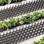 Lot de 4 Grilles Anti-nuisibles - Pour Jardinières et Potagers - Protection Immédiate de la marque Bird GDT image 2 produit