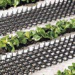 Lot de 4 Grilles Anti-nuisibles - Pour Jardinières et Potagers - Protection Immédiate de la marque Bird-GDT image 2 produit
