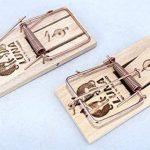 Lot de 5 Pièges à souris, Tapette à souris efficace et puissant en bois réutilisable de la marque Artecsis image 3 produit