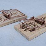 Lot de 5 Pièges à souris, Tapette à souris efficace et puissant en bois réutilisable de la marque Artecsis image 4 produit
