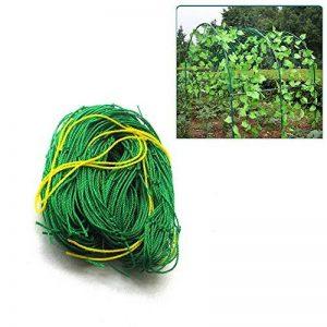 Lulalula support pour plantes Net en treillis en nylon renforcé, support pour plantes de jardin pour plantes grimpantes et de légumes protection Treillis en pleine Croissance support–Vert 9ft x 6ft Green de la marque lulalula image 0 produit