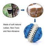 MixMart - Boule/jouet à mâcher non toxique en caoutchouc pour chiens, parfumé à la menthe de la marque MixMart image 2 produit