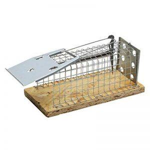 Moorland Piège de capture à souris - Une entrée - 13x5x5 cm - Pour intérieur et extérieur de la marque Moorland image 0 produit