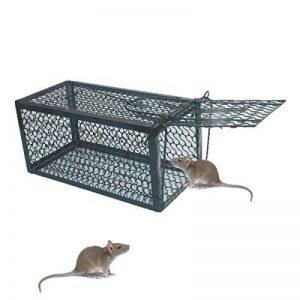 nasse à rat TOP 8 image 0 produit