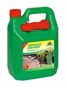Neudorff 617545 Désherbant Finalsan Polyvalent Prêt à l'Emploi, Vert, 2,5 L de la marque Neudorff image 0 produit