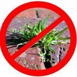 NOOR 01009010UKSC Bâche anti-mauvaises herbes Noir 0,9 x 10 m (Import Allemagne) de la marque NOOR image 3 produit
